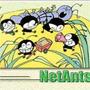 网络蚂蚁中文官方版V1.25
