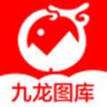九龙图库助手app