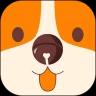 铃铛宠物社区app